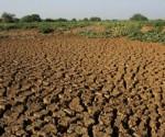 degradacion-suelos